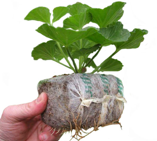 торфяные-брикеты-Growblock-.jpg